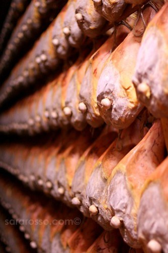Rows of Maturing Prosciutto Crudo Ham from Parma, ready for Sale