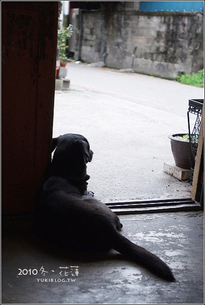 [大肚婆的花蓮趴趴造]*時光二手書 (殺時間的好去處) Yukis Life by yukiblog.tw