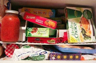 Caroline's Freezer 12-9-09_0011_1101209