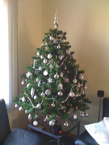 Mijn kerstboompje bij daglicht...