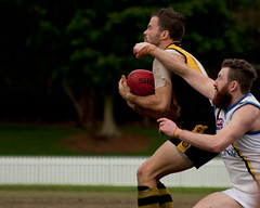 Balmain-Tigers-v-UNSWES-Round-9-2014-0044