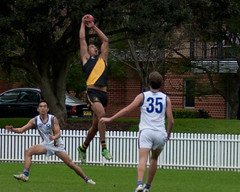 Balmain-Tigers-at-UNSW-ES-Round-9-2014-0029