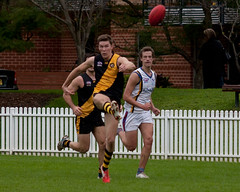 Balmain-Tigers-v-UNSWES-Round-9-2014-0056