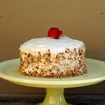 Vegan Crimson Velveteen Cake