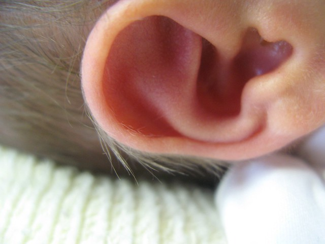 Newborn Ear