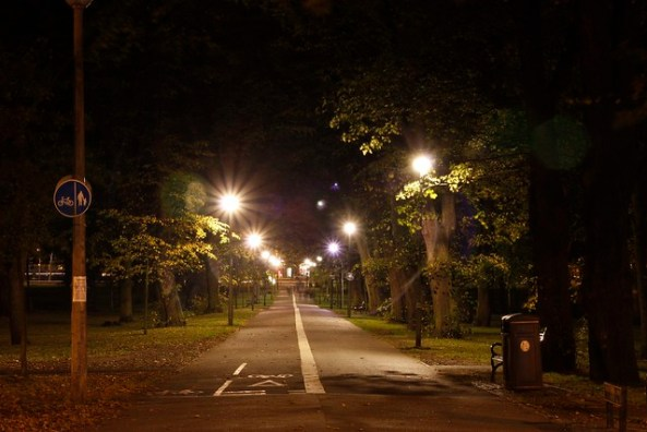 The Meadows at night