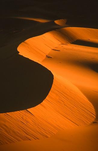 Sahara Dune
