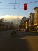 Red Light on the DTES