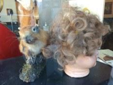 Stuffed squirrel, PDX