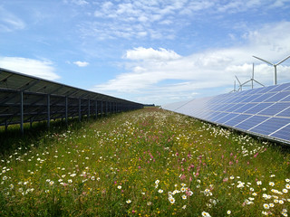Westmill Solar Park AGM - 06