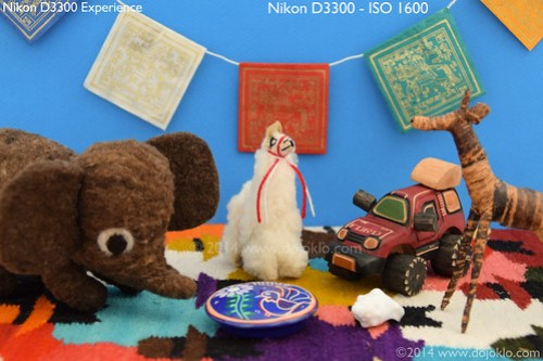 Nikon D3300 book manual guide how to use tips tricks dummies iso setting setup
