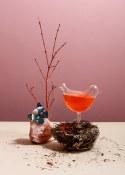 Botanist Cocktail_Pretty Bird Cocktail