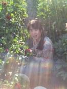 Flower garden, Naramata