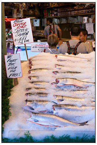 Fresh Copper River Sockeye Salmon