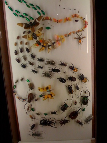 Artwork with bugs! Amazing!