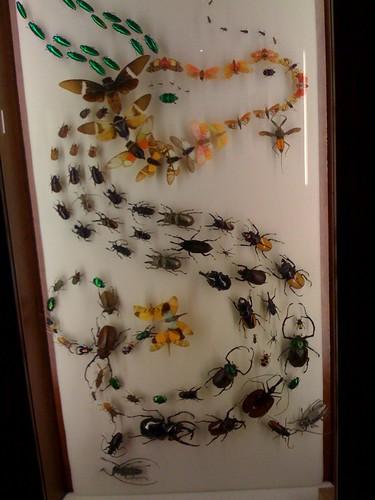Artwork with bugs! Amazing!