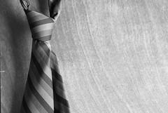 November 18, 2008 : Tie