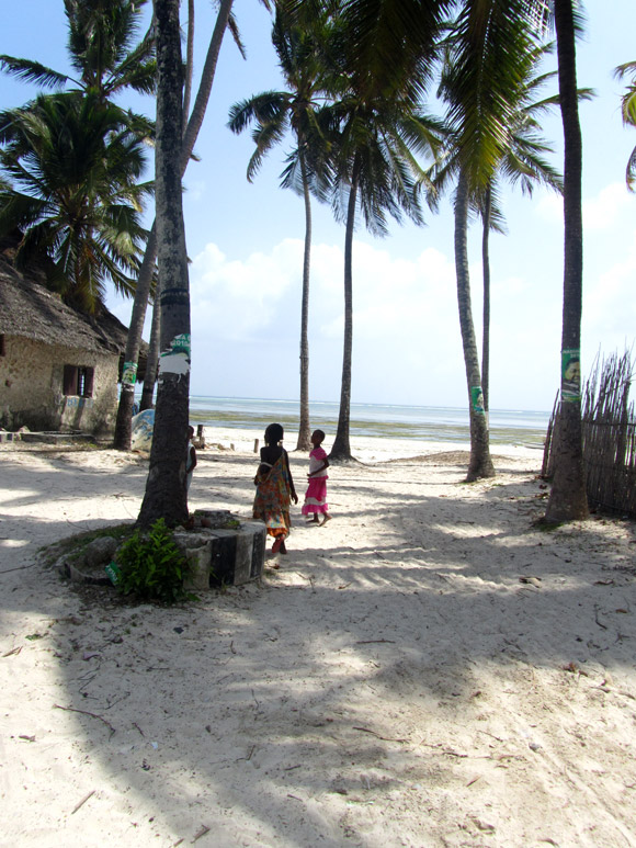 Bwejuu, Zanzibar