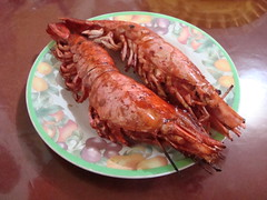 galah shrimps