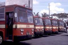 Philippine Rabbit buses (fleet Nos 299, 475, 8...