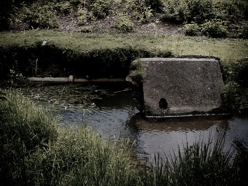 Concrete in River