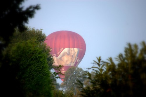 Triumph Balloon Through the Trees
