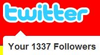 1337 Twitter Followers