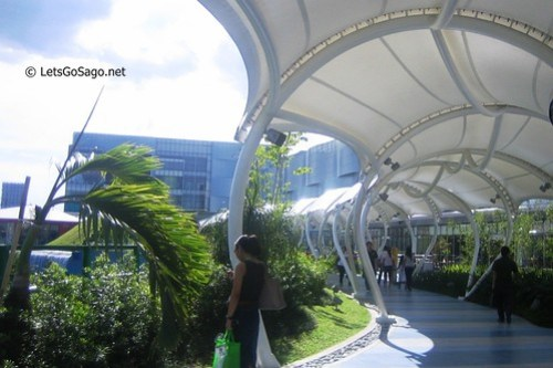 Sky Gardens Shaded Walkways leading to the Mount