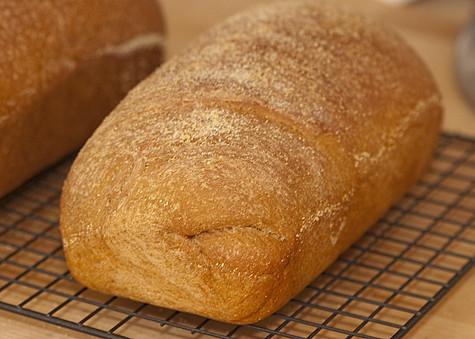 Baby Loaf