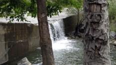 Holy Jim Falls Hike 03-09-09