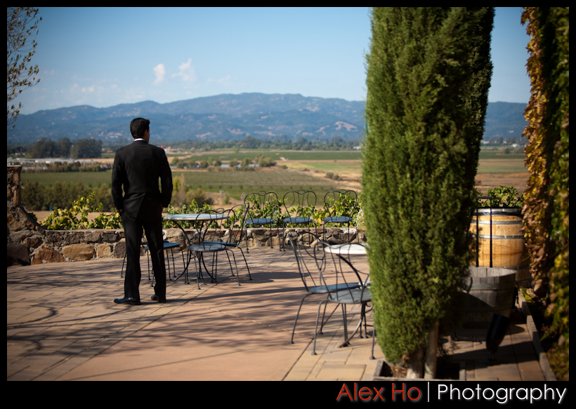 3952073347 163d86b88d o Jes and Claudio Wedding at Viansa Winery
