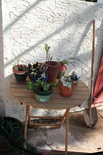 Potting table, after