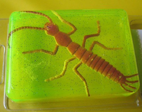 Bug Soap Jacob made for David cropped