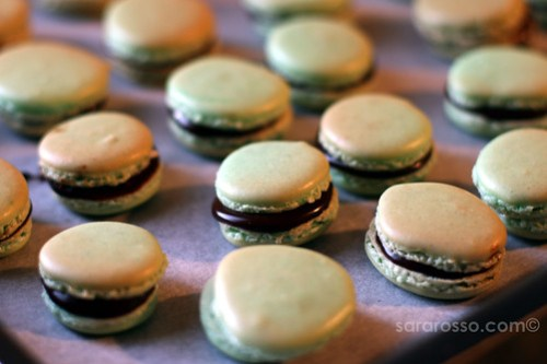 Dark Mint Chocolate Ganache French Macarons Close-up