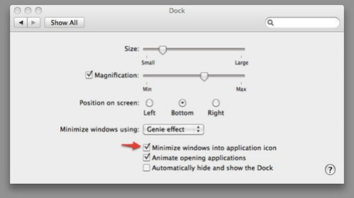 minimized windows can now disappear from the dock