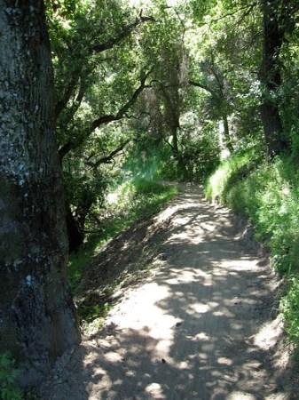Seven Spring Trail