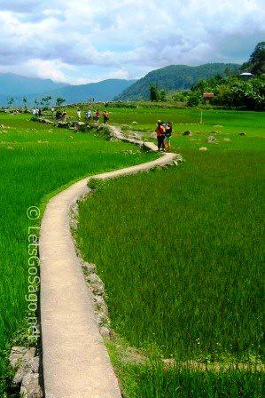 Banga-an Rice Terraces Pathway