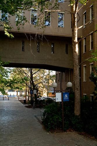 John Medley, Melbourne University