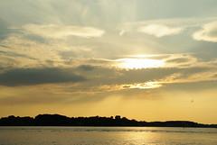 Golfe de Morbihan