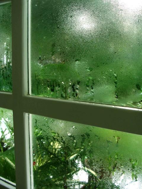 Monsoon Window