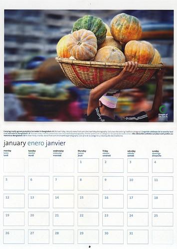 Friends of the Earth International 2009 Calendar