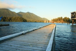 Tofino dock at sunset