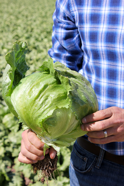 LaBrucherie Produce-3-2