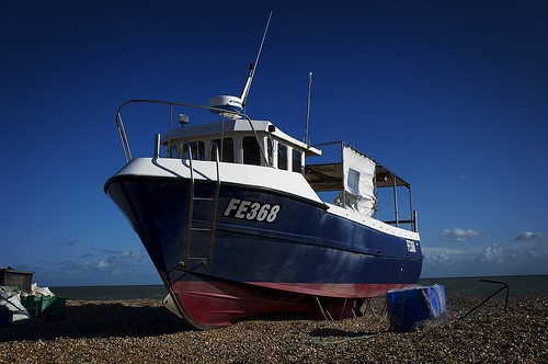 FE368 Dungeness