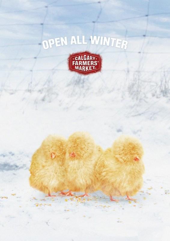Calgray Farmer Market - Winter Chicken