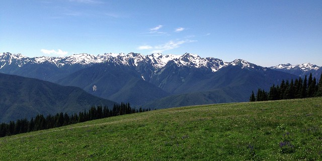 Hurricane Ridge, Olympic National Park, Washington, 2013