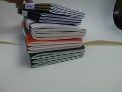fieldnotes03