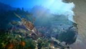 Gauthier_Underwater_Colored_withMB_WireframePassStill__00100
