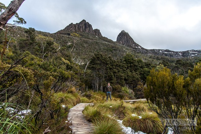More beautifully constructed eco-trail around Dove Lake.