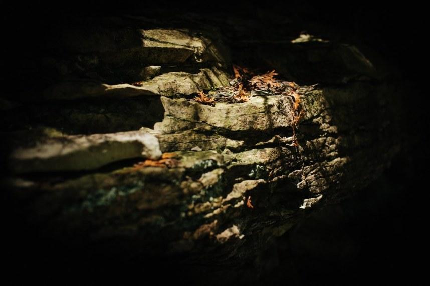 Flowerpot Island: Limestone Ledge